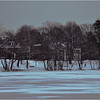Jamaica Pond, Jamaica Plain. February, 2014.