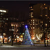 Boston Common. December, 2013.