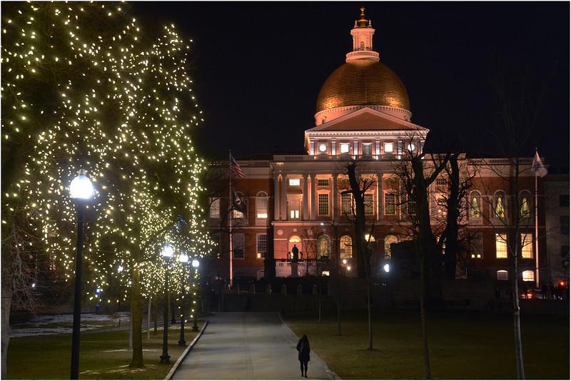 Boston Common. December, 2013.