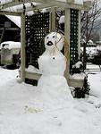 snowslutsml