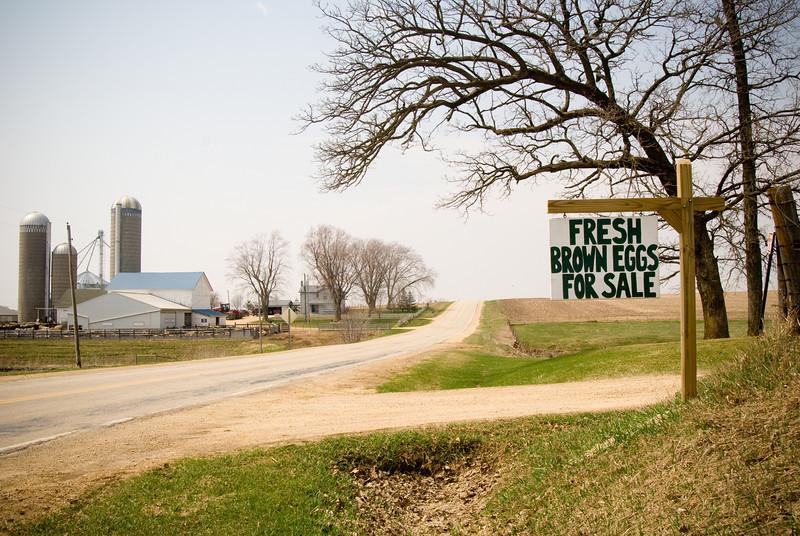 A Green County farmscape near Twin Grove, WI.