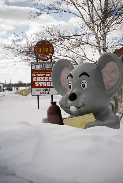 """Cheese mouse"" statue half-buried in snow near Arena, WI."
