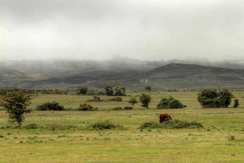 Greenland Farm nature reserve.