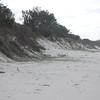 New Brighton.....Dune erosion prior to beach scraping  Aug 2099