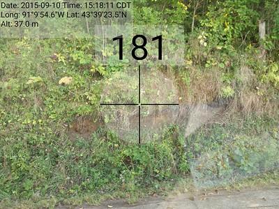 Auction 901 Drive Photos