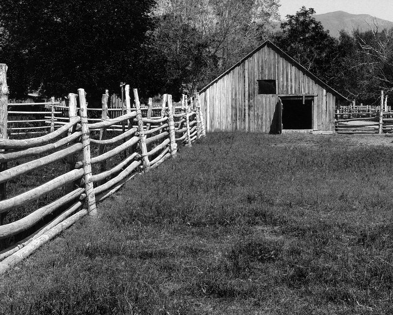 Barn and corral #2. The fence at left is made from lodgepole pine, a prolific tree in the area that makes nice, straight poles, usually. This style of barn is still used today.