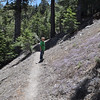 Blake on the Pacific Crest Trail