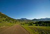 A dirt and gravel road leads into the green wilderness of northern Wyoming.