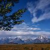 Willow Flats, Grand Teton NP-3