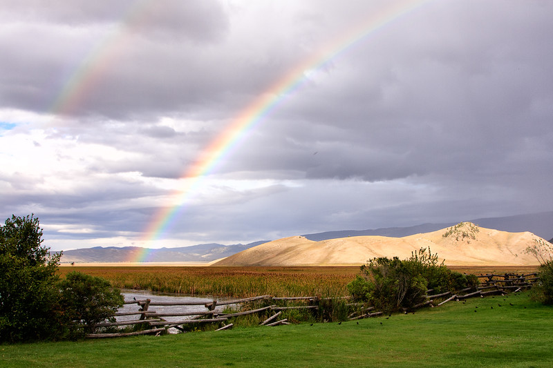Jackson Hole rainbows