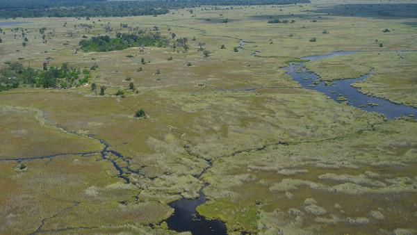 Xakanaxa Camp Okavango 2013