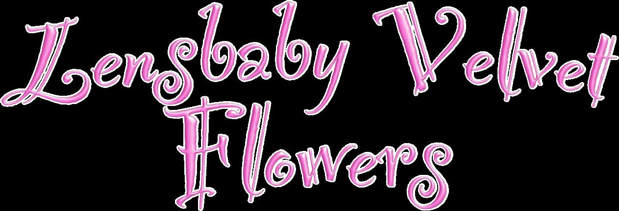 Lensbaby Velvet Flowers