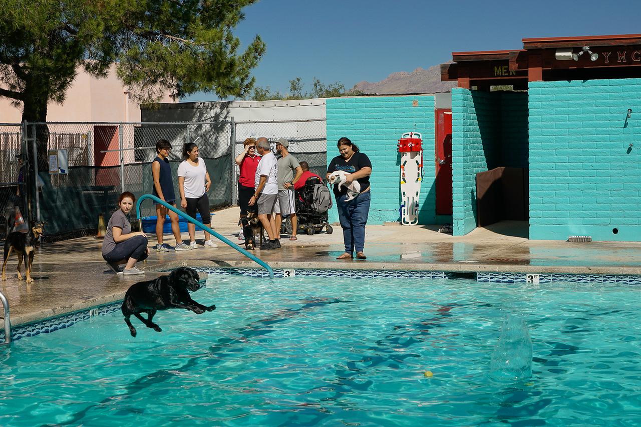 YMCA DOG DAY