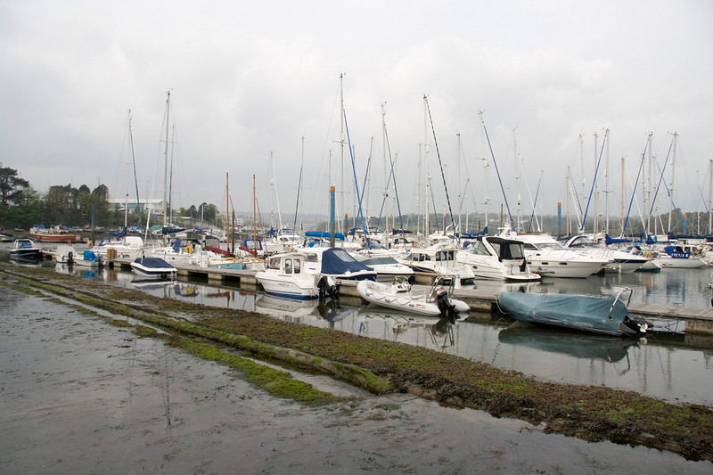 View of the marina at low tide