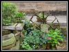 Working waterwheel in courtyard...