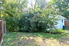 Back yard - before