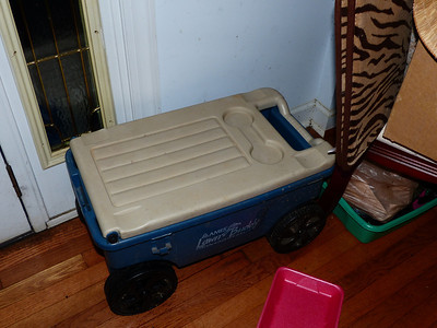 Cooler wagon, complete with drink holders.  I paid $4 for it.