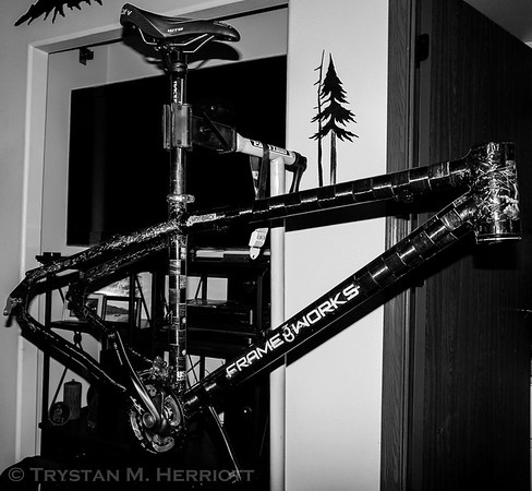 "B&W conversion highlights the various carbon fiber ""textures"" of the frame's finish."