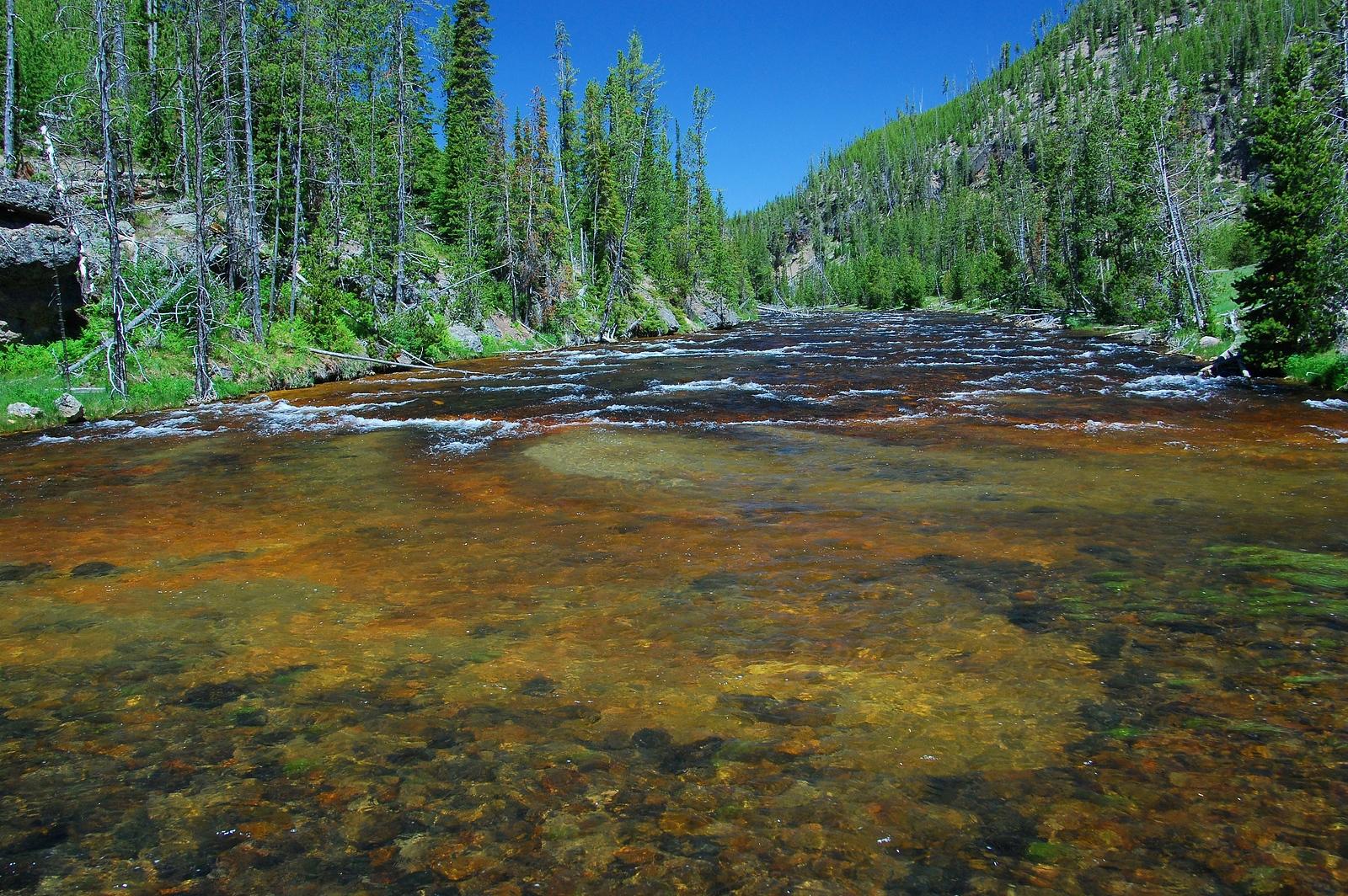 Yellowstone%201%20128-X3.jpg