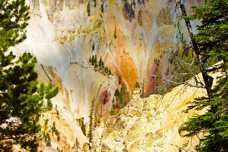 Yellowstone Grand Canyon Colors_D3S0954