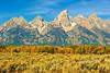 Mount Moran and Fall Color_GTNP_D3S1432