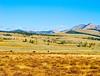 Yellowstone Scenic_D3S0699
