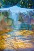 Travertine Flow_Upper Terrace Drive_YNP_D3S0690