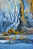 Dead Tree in Travertine_sm_Upper Terrace Drive_YNP_D3S0696