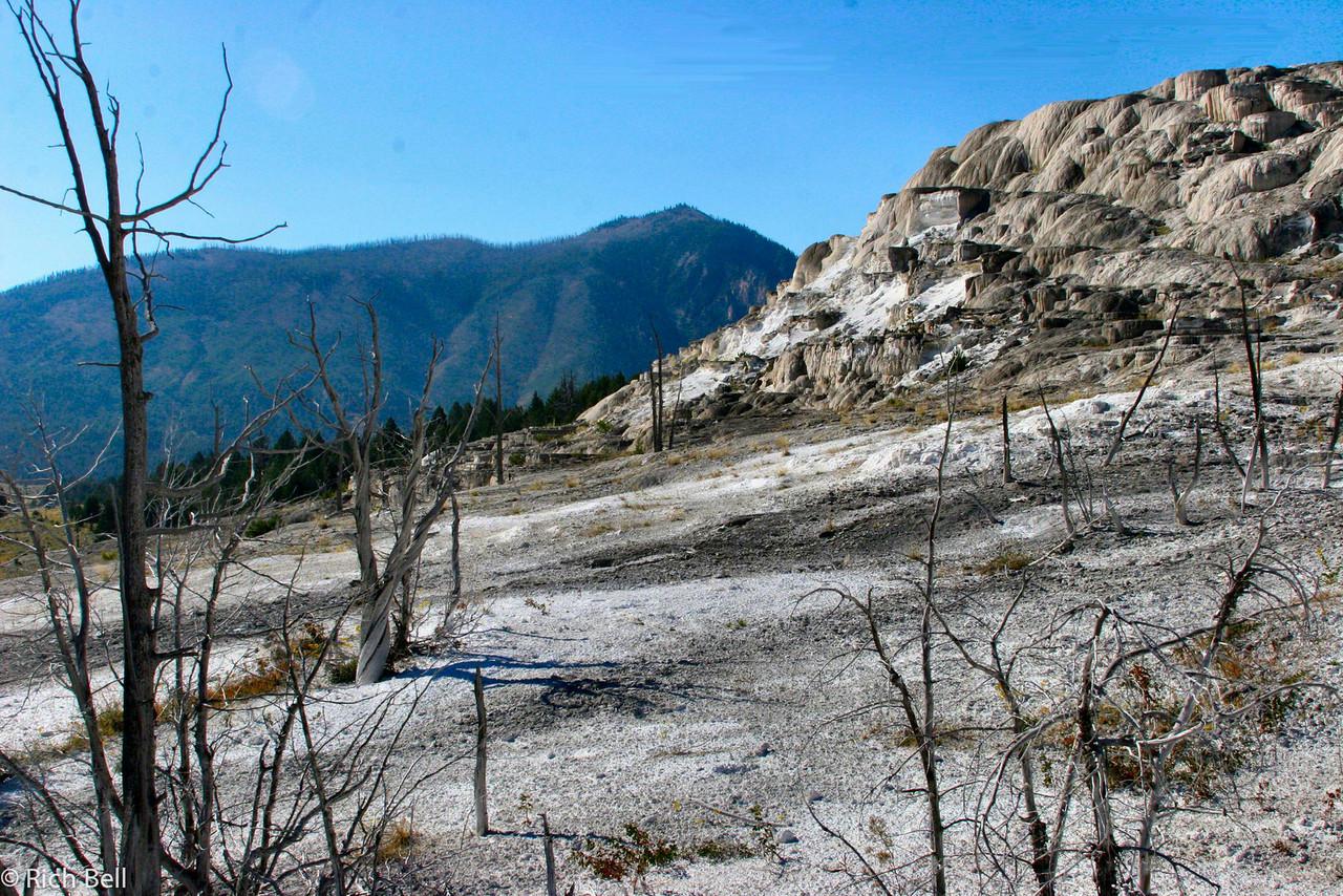 20100721 Yellowstone NP 0024