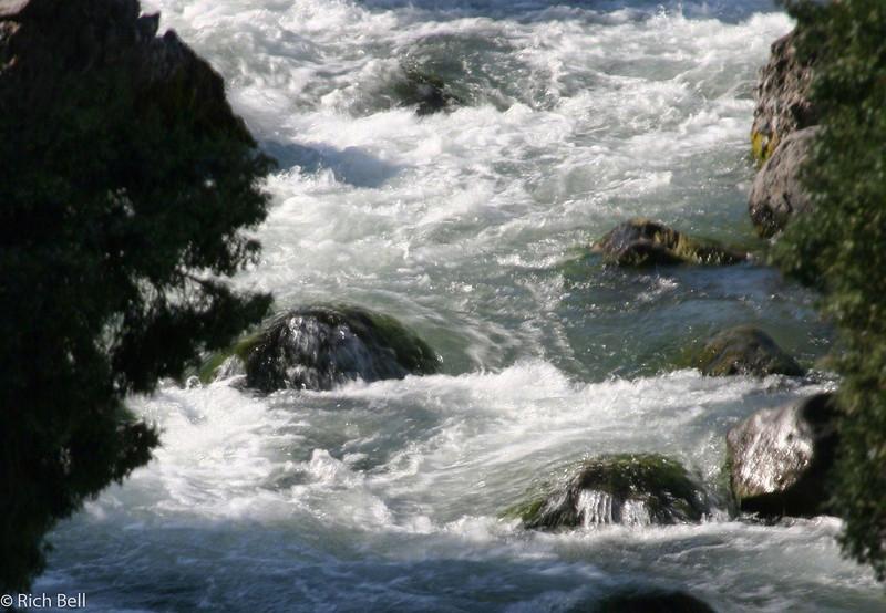 20100721 Yellowstone NP 0018
