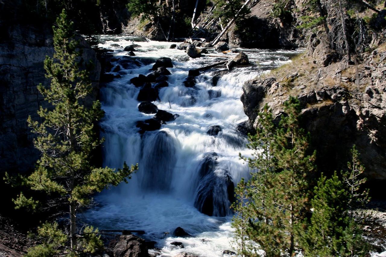 20050907 Yellowstone NP 0014