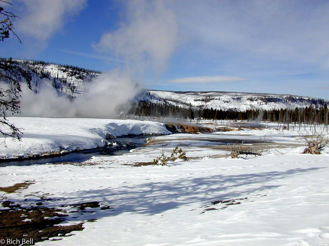 20100721Meadow near Hot Springs in Yellowstone0048