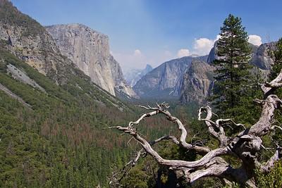 Yosemite8/17