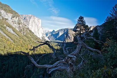 Yosemite/Nov'14