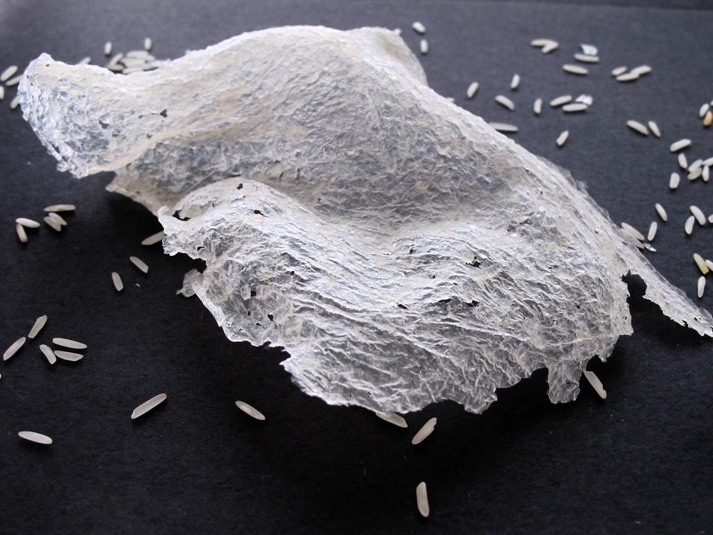 Handmade Rice Paper Sculpture<br /> Artist: Isabel Ng