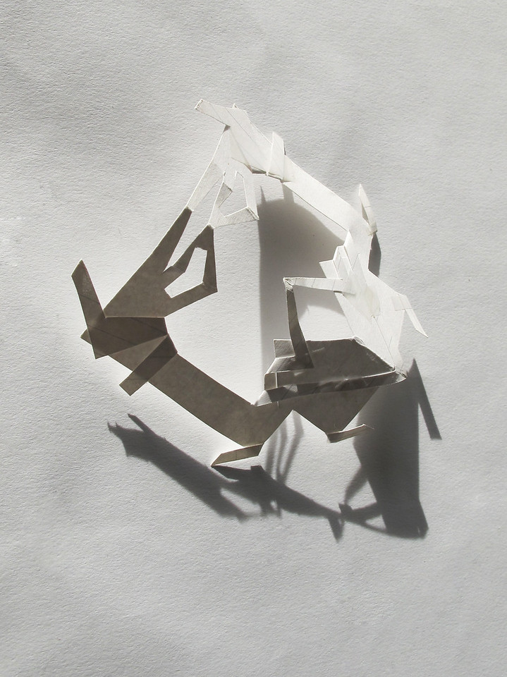 """BUG""<br /> Photo & Paper Sculpture by Isabel Ng"