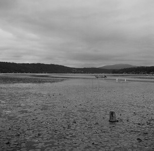 Lake Sammamish, 2015. Negative: Ilford, 400 ASA. Zeiss orange (371) filter for better contrast.