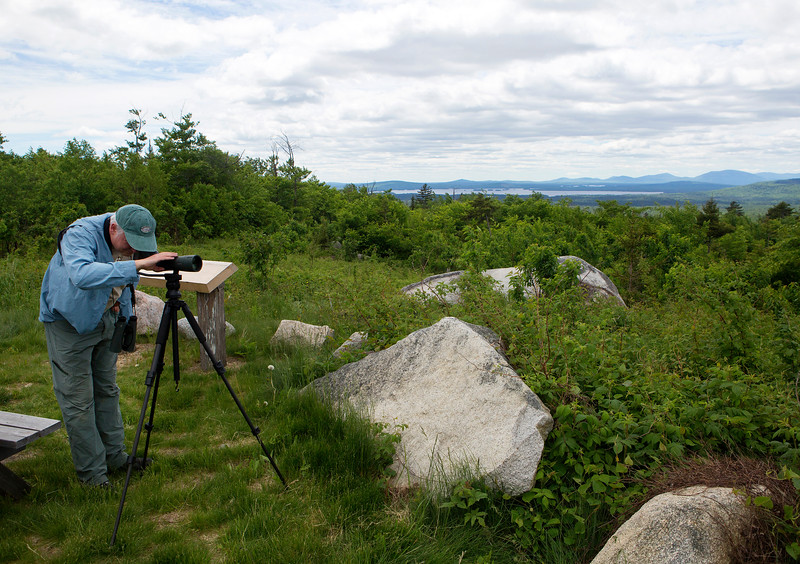 KATAHDIN WOODS AND WATERS NATIONAL MONUMENT, Maine -- 06/14/2017 - Jeff Wells looks for birds from a scenic overlook in the Katahdin Woods and Waters National Monument Tuesday.  Ashley L. Conti | BDN