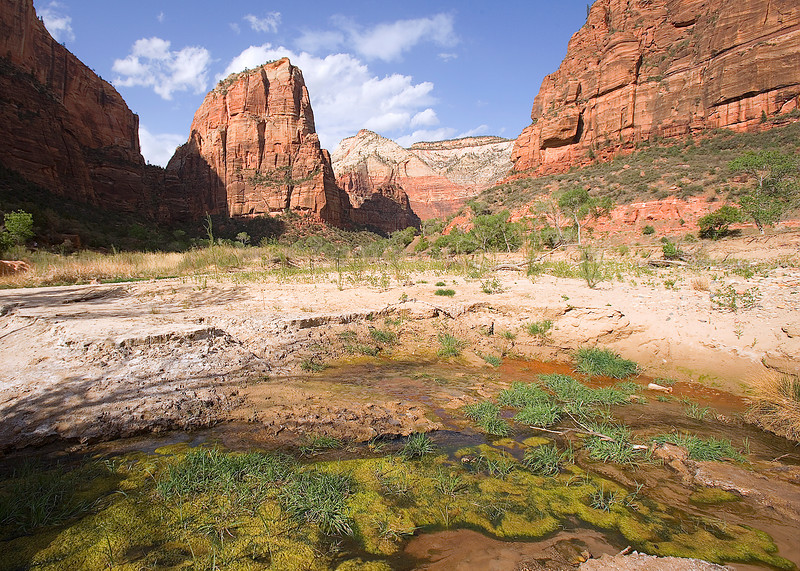 Angles Landing from the Emerald Pool trail