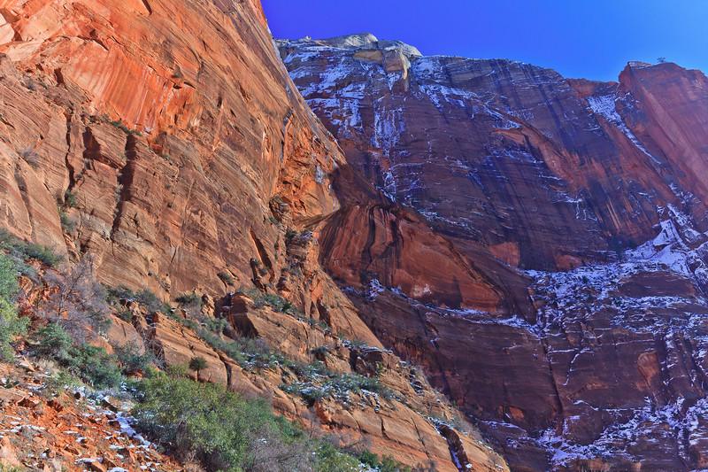 20110107 Zion NP 0216