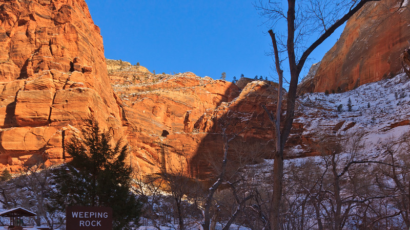 20110107 Zion NP 0174