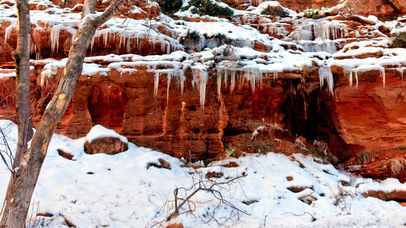 20110107 Zion NP 0192