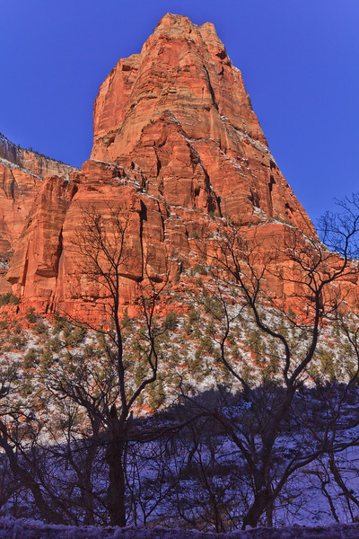 20110107 Zion NP 0141