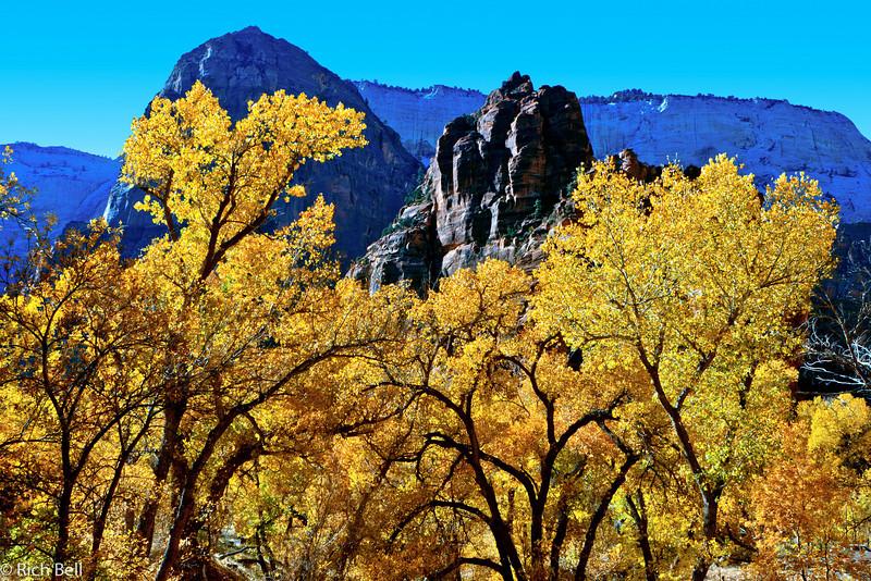 20071112 Zion Natl Park 0059