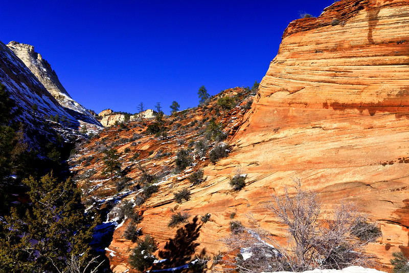 20110107 Zion NP 0418