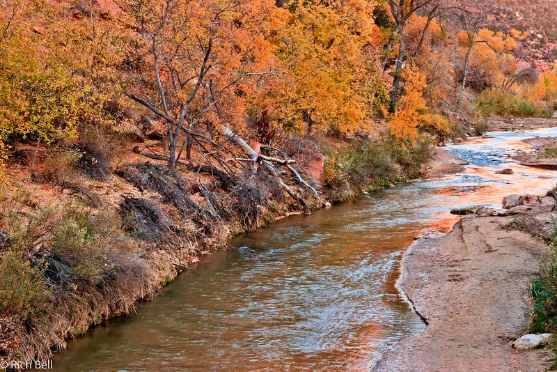 20071112 Zion Natl Park 0093