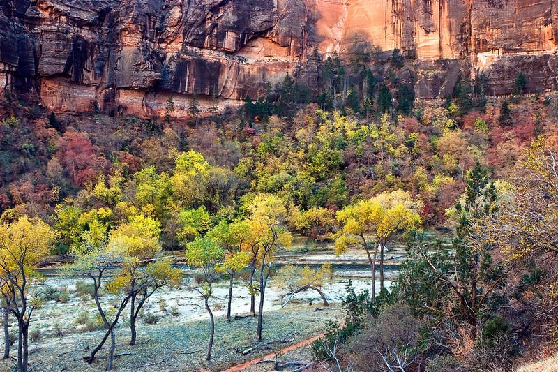 Zion N P  Utah 0025