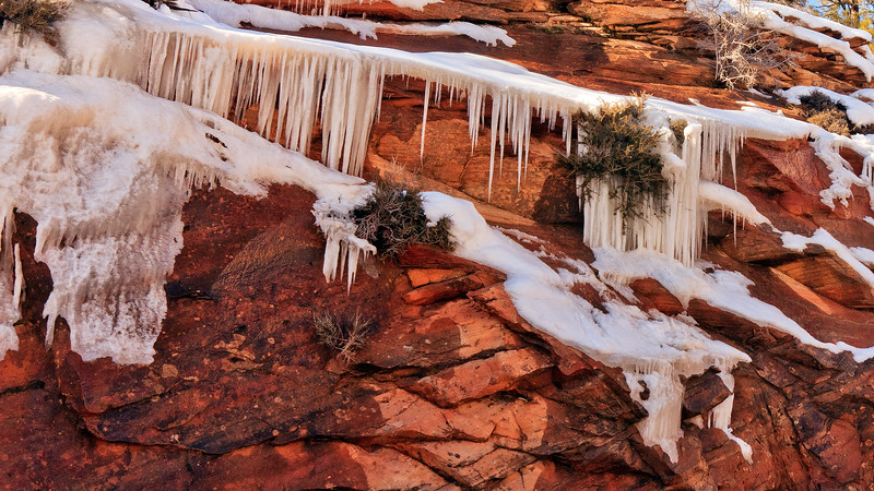20110107 Zion NP 0421