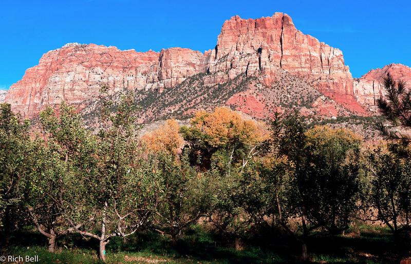 20071112 Zion Natl Park 0111