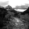 Zion National Park - January 2010 (same shot as before just converted to B&W)